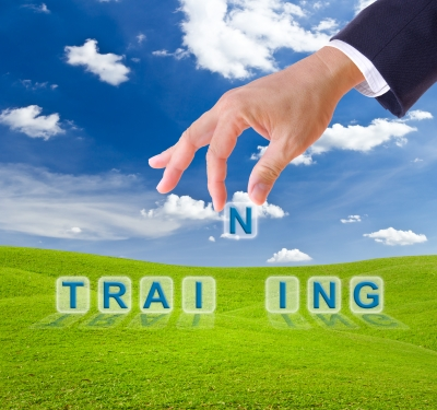 Looking for a Lifestyle Business? Train to Train